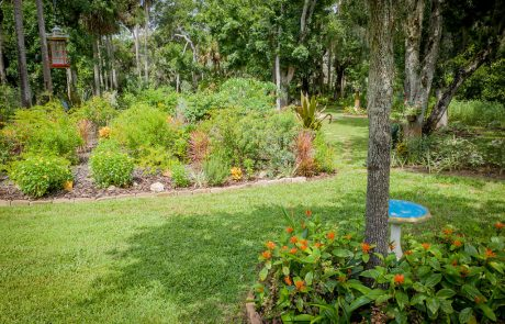 garden in Palm Coast