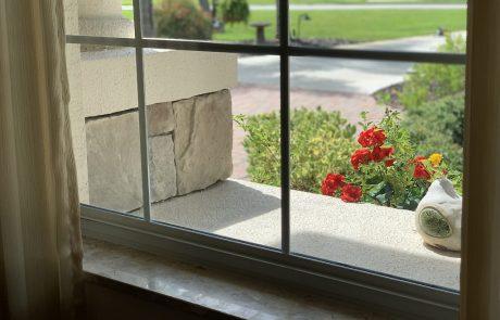 window sill with bird